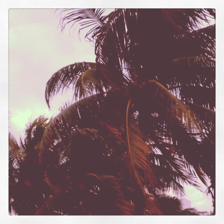 @Miami