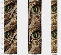 katės akis 1