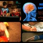Science Saturday: Apologia's Anatomy & Physiology (Lesson 4) @Tabitha Philen (Meet Penny)