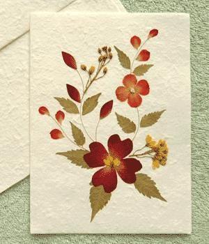 Como fazer flores prensadas no micro-ondas. Você gosta de artesanato? Se quer ter novos elementos para se entreter com suas criações, em umComo.com.br temos uma proposta para você. Vamos explicar para você como fazer flores prensadas no micro-o...
