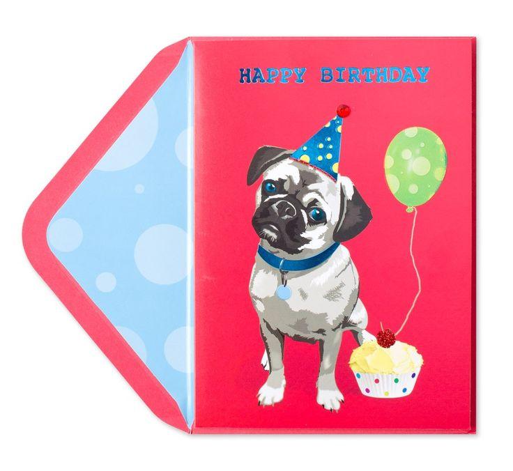 Cute Birthday Pug Price $4.95