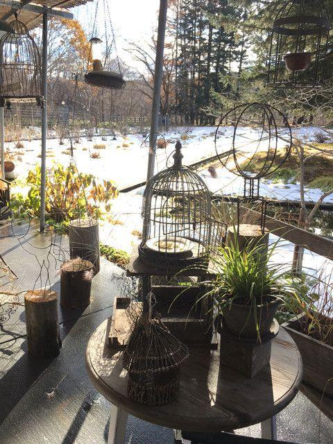 北海道の可愛い森の中のカフェ☆MEON農苑ガーデンカフェ の画像 長谷川朋美オフィシャルブログ「BEAUTY☆LIFE」Powered by Ameba