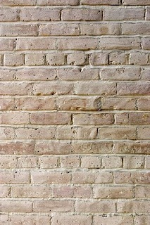 Tips for whitewashing brick.  Start with 50/50 paint + water. Use flat paint. Choose a warmer tone white.