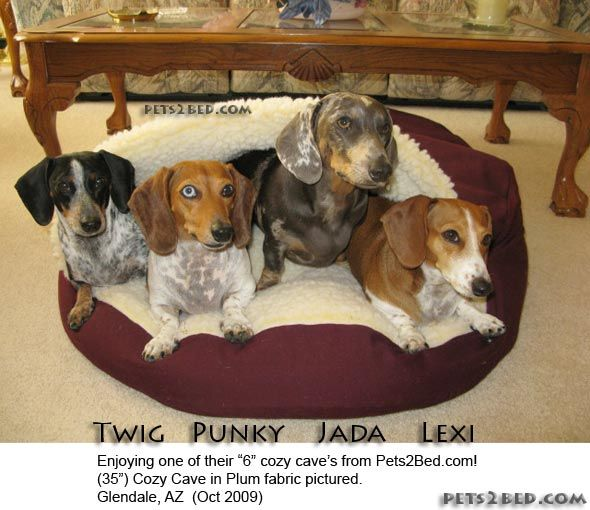 cozy cave dog bed original cosy hooded pet beds - Cozy Cave Dog Bed