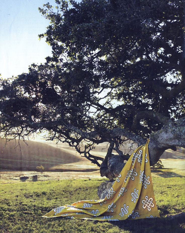 Madeline Weinrib Goldenrod Megan Cotton Carpet Styled By Olga Naiman And Shot By Laurie Frankel For Real Simple January 2008