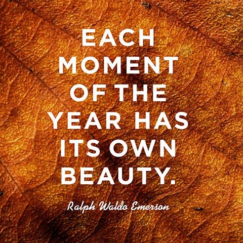 Quote About Finding Beauty Ralph Waldo Emerson Word Season