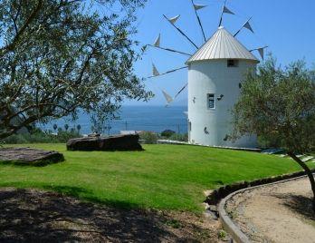 Olive park. Looking for more information about Kagawa? Go Visit Shodoshima Furusato-mura. http://www.shodoshima.jp/