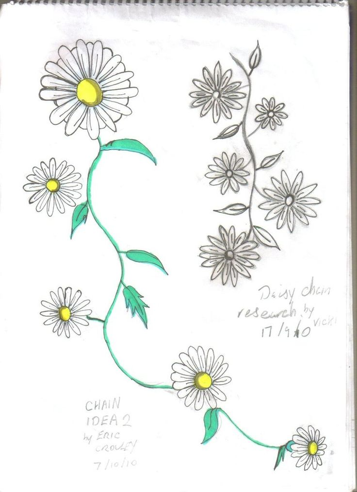 A Set Of Daisy Chain Tattos The One On Right Is By My Friend Vicki And Design With Colour I Will Hav Combined Done Soon