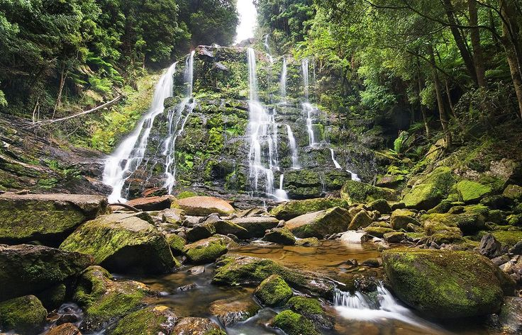 Nelson Falls, Franklin-Gordon Wild Rivers National Park