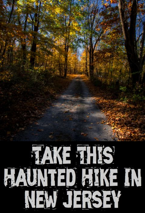 Hiking | Forest | Park | Trails | State Park | New Jersey | Jenny Jump | Haunted | Ghosts | Hike
