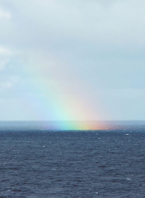 ....and then a rainbow came to brighten and color my day....