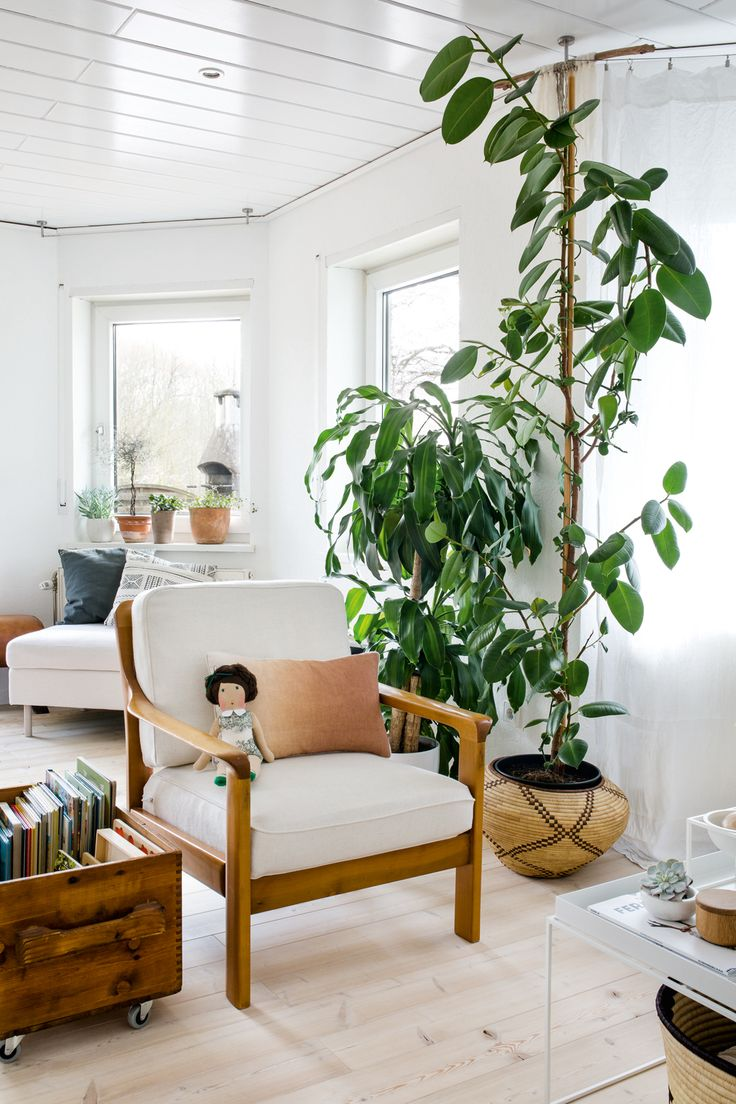 6 Ways To Decorate With Plants + Urban Jungle Book Review