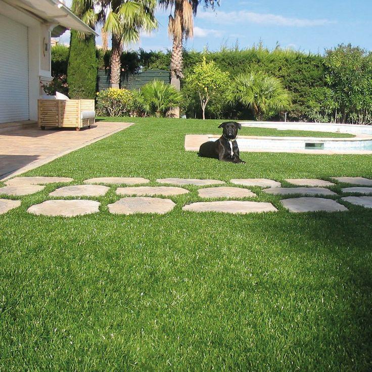 Se stai cercando un'erba sintetica adatta ai tuoi animali domestici scegli Wizzy.