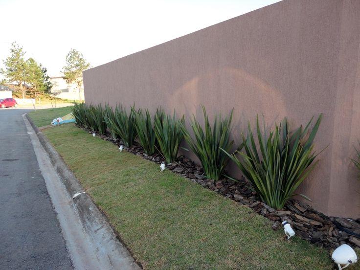 18 best arranjos de plantas images on pinterest - Plantas trepadoras para muros ...