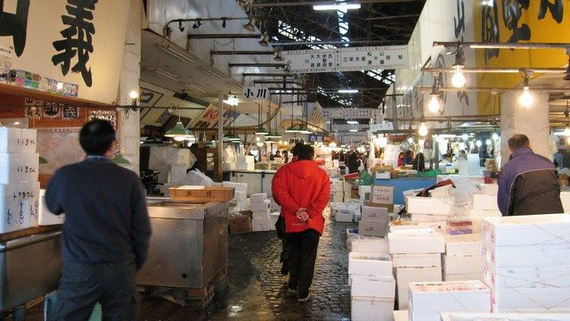 仲卸のお店のタイプは取り扱う魚の種類で分かれています。  サケ・魚卵専門、練り物専門、しらす・小魚専門、近海魚、遠海魚、エビ、くじら、干物、そしてマグロ専門などです。