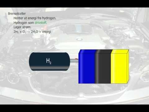 BRENSELCELLER Her beskrives virkemåten til en brenselcelle som henter ut energi fra hydrogengass og oksygengass.