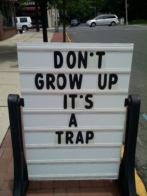 the secret to HAPPY! :-): Life Motto, Stay Young, Funny Signs, Young At Heart, Funny Pictures, Growing Up, So True, True Stories, Peter Pan