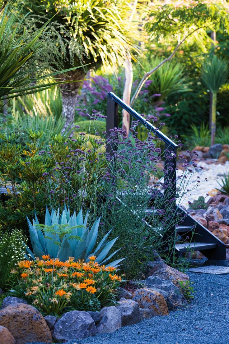 garden-stairs-plants | rocks, fine gravel/stone mix and pops of colour