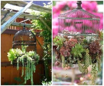 1000 Idee Per Il Giardino : Idee fai da te economiche per un giardino spettacolare