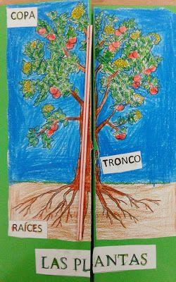 """El blog de la maestra Berta: LAPBOOK """"LAS PLANTAS""""."""
