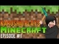 Lets Play MineCraft - Episode 1: The Beginning