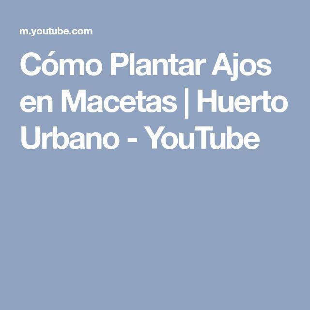 Cómo Plantar Ajos en Macetas | Huerto Urbano - YouTube