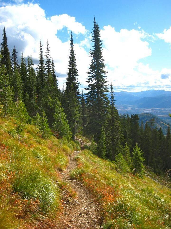 Scotchman's Peak...north Idaho  Scotchman's Peak is a great hiking destination for our guests at The Last Resort Vacation Cabin.  http://www.lastresortvacation.com