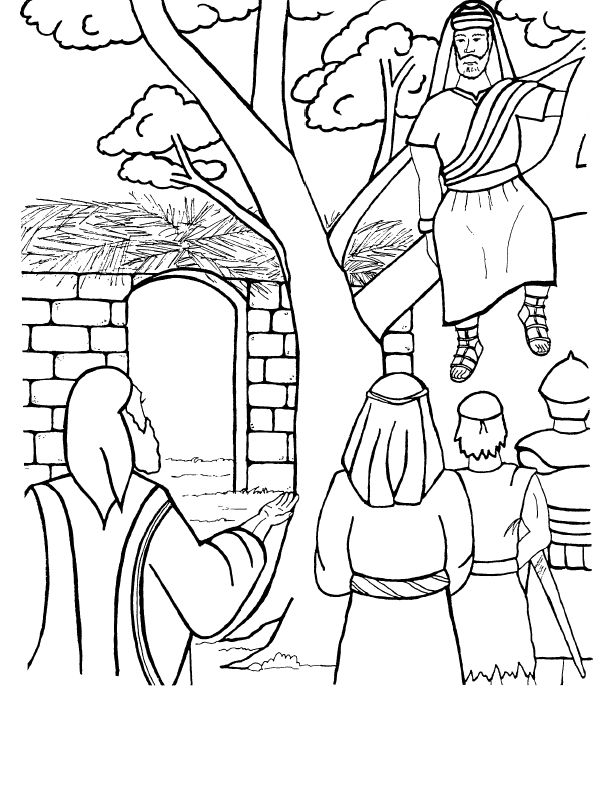 Coloring pages zacchaeus tree image