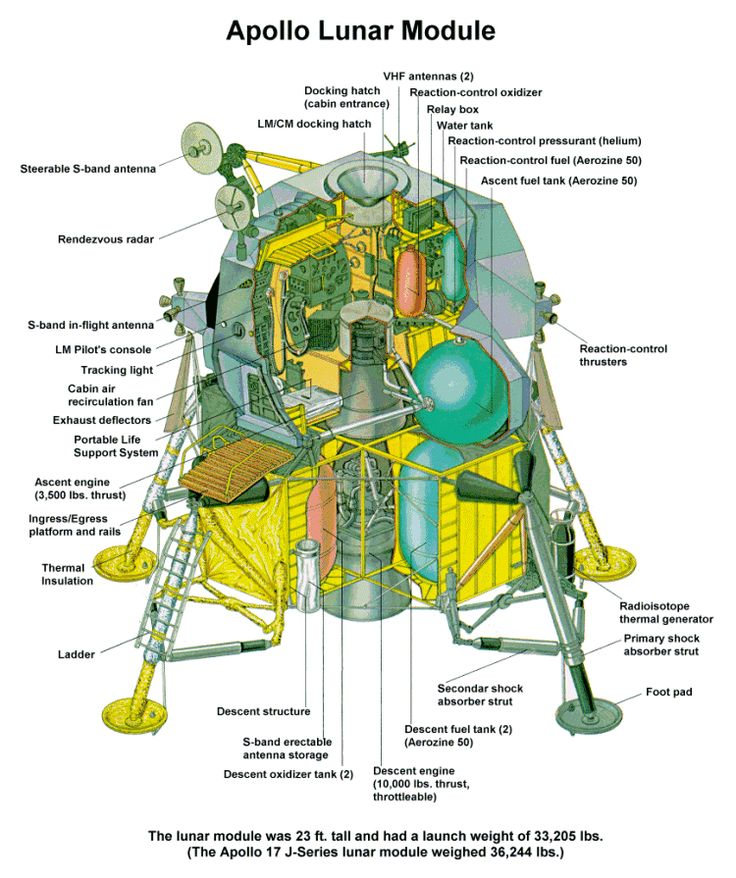 moon landing modules cutaway - photo #5