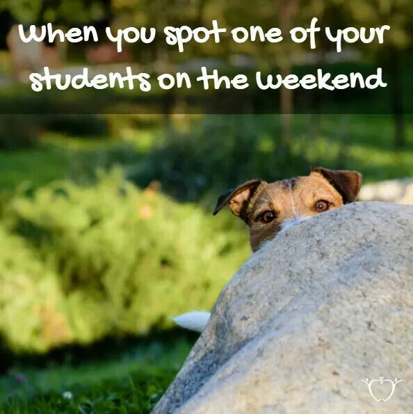 Yes! And on Monday the class and I spent some time devising a schedule for the coffee shop so we could avoid further run ins outside of school!