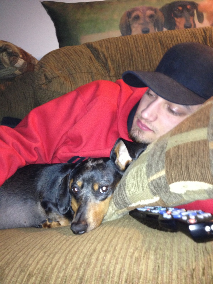 Oh the love of a Doxie!