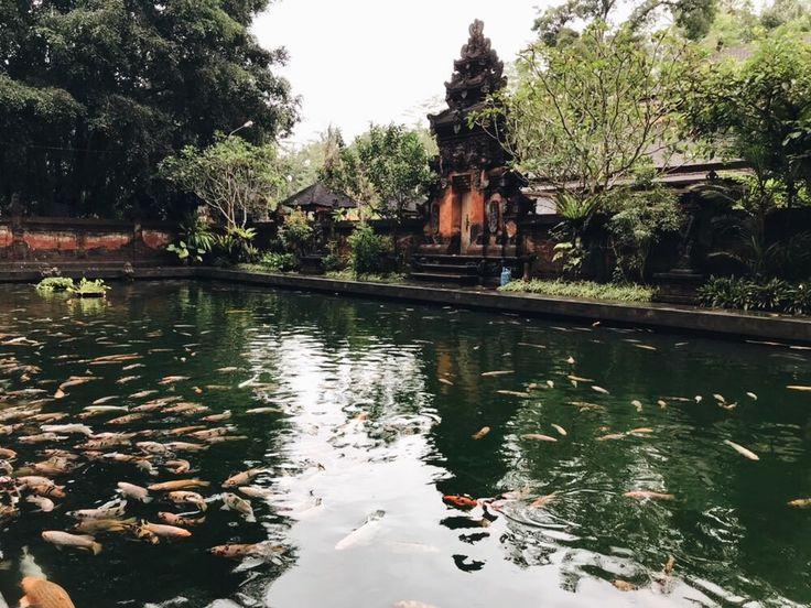 ✨ Pinterest: ash_ january Tirta Empul, Holy Spring Water Temple, Bali, Indonesia