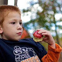 Promote Healthy Kids Dental Care With Apple Recipes