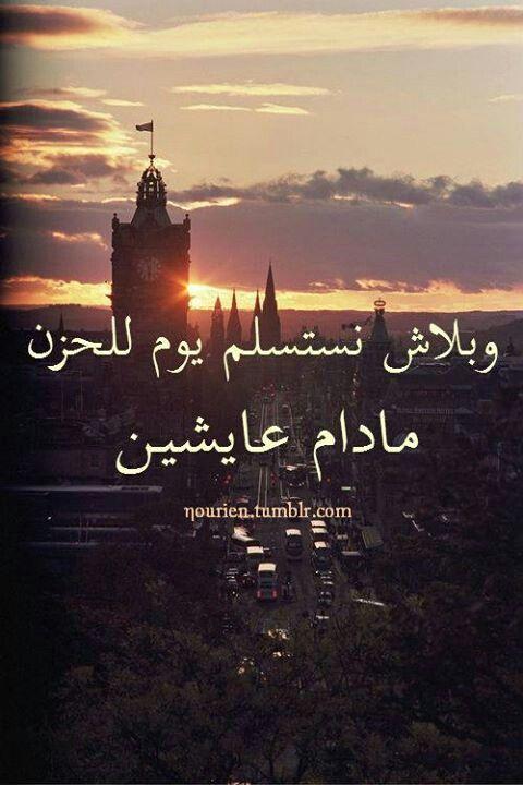 صورة كلمات محمد منير