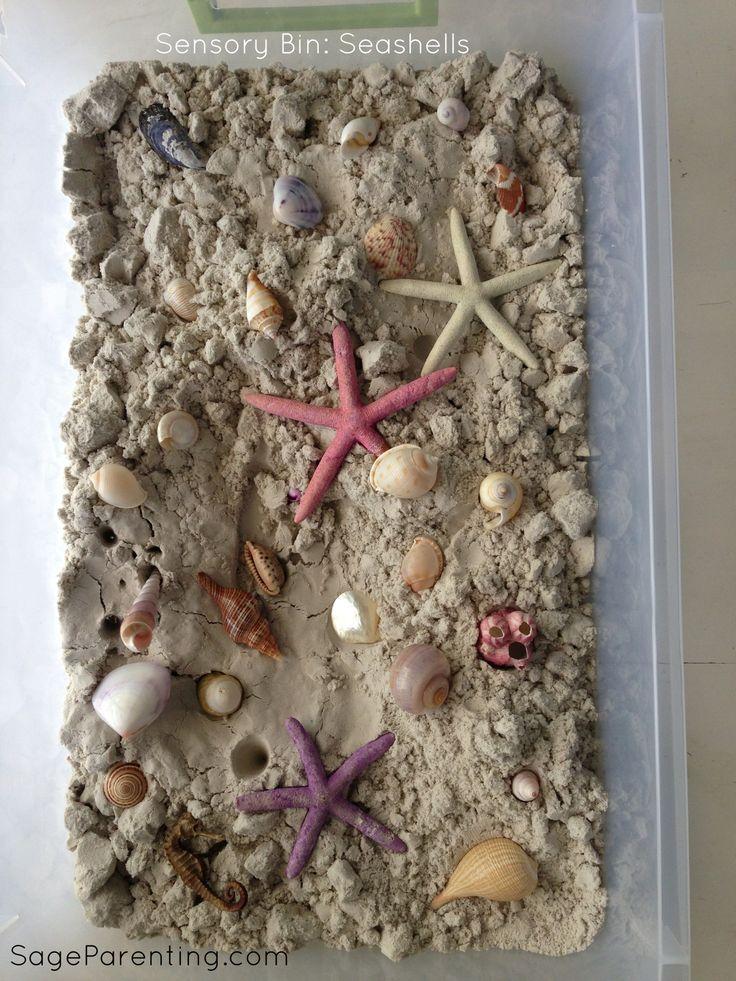 #SensoryBin : Seashells