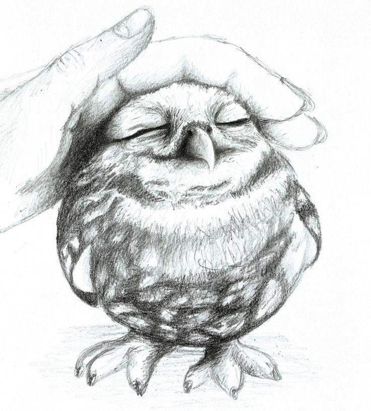 Lovely owl by Reni89 on deviantART