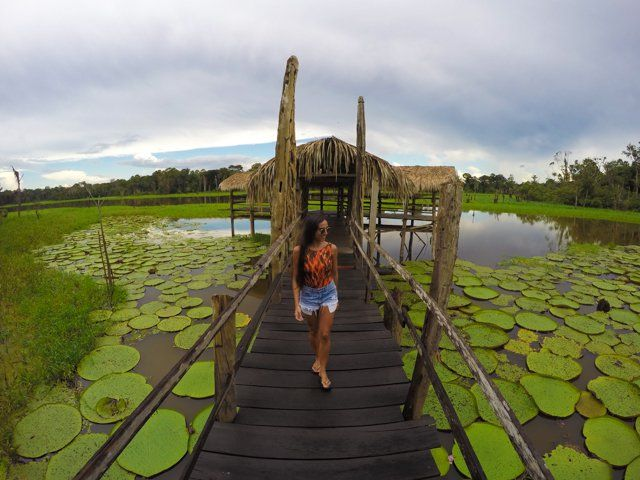 O que fazer em Manaus: dicas para você aproveitar ao máximo