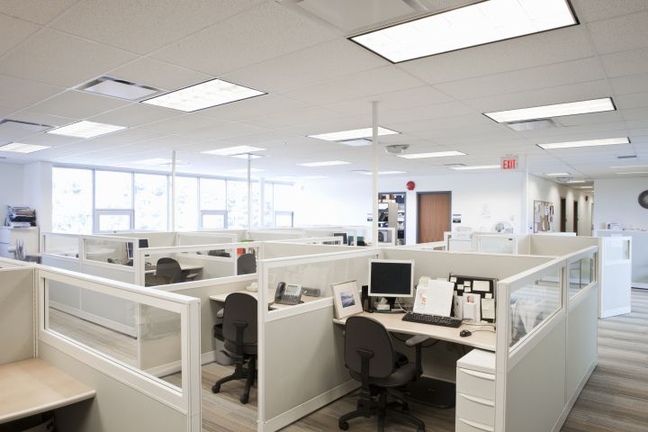 It's Time to Bring Back the Office Cubicle