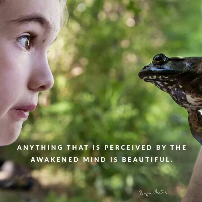 Anything that is perceived by the awakened mind is beautiful. - Byron Katie