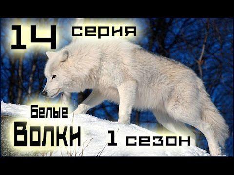 Сериал Белые волки 14 серия 1 сезон (1-14 серия) - Русский сериал HD