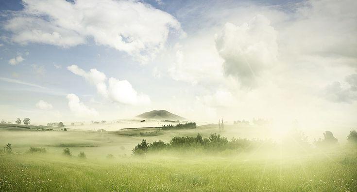 Právě teď kdesi v jižních Čechách. Poslouchejte ptačí ráj v přímém přenosu!