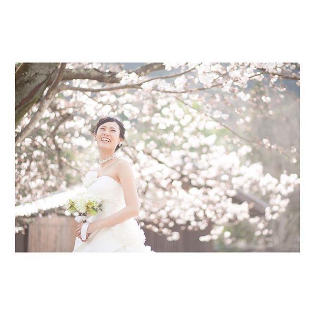 【ktntk02】さんのInstagramをピンしています。 《明日はまりなの結婚式! 楽しみ〜\(^o^)/💕 #photo#写真#前撮り#dress#桜#wedding#結婚式#みんなに会えるのも楽しみ》