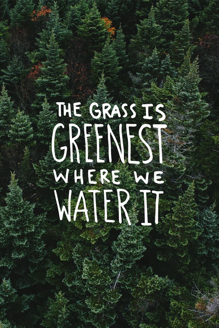 The Grass is Greenest Where you Water It  |  The Fresh Exchange