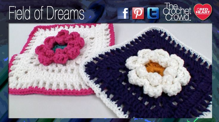 Field of Dreams Raised Granny Squares This gorgeous raised flower is part of the Field of Dreams afghan. It's large