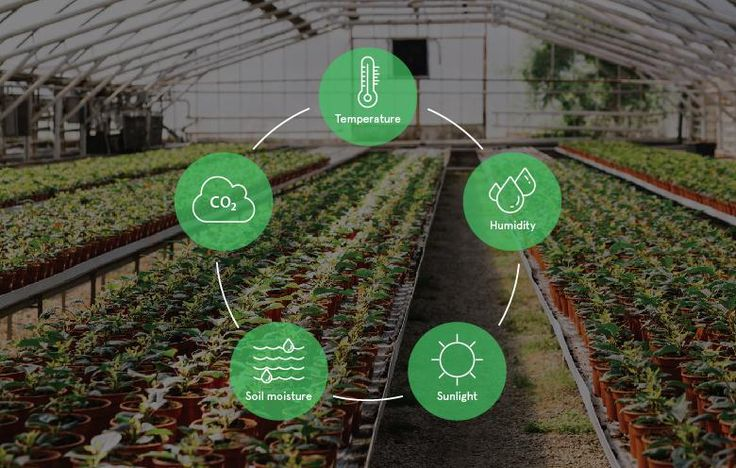 (99+) Greenhouse Design ( Controlled Environment