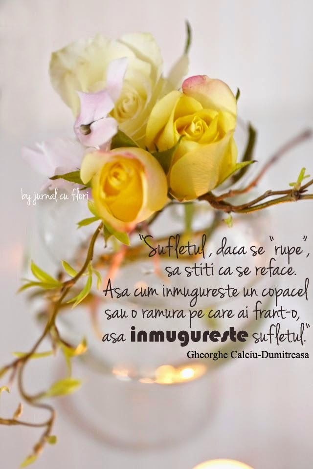 #citat despre suflet #dragoste refacere #GheorgheCalciuDumitreasa , inmugurire, trandafiri creanga ciclamen