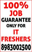 We provide 100 percent job guarantee to IT freshers.
