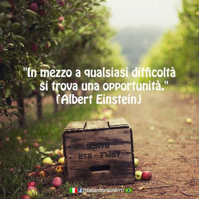 """In mezzo a qualsiasi difficoltà si trova una opportunità"" ~ Albert Einstein ~ ""In the midst of any difficulty lies an opportunity"""