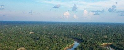 Airborne measurements made as part of the Green Ocean Amazon experiment (GOAmazon) show that the Amazon rainforest emits at least three times more isoprene than scientists had previously thought. According to Paulo Artaxo, Full Professor at the University of São Paulo's Physics Institute...