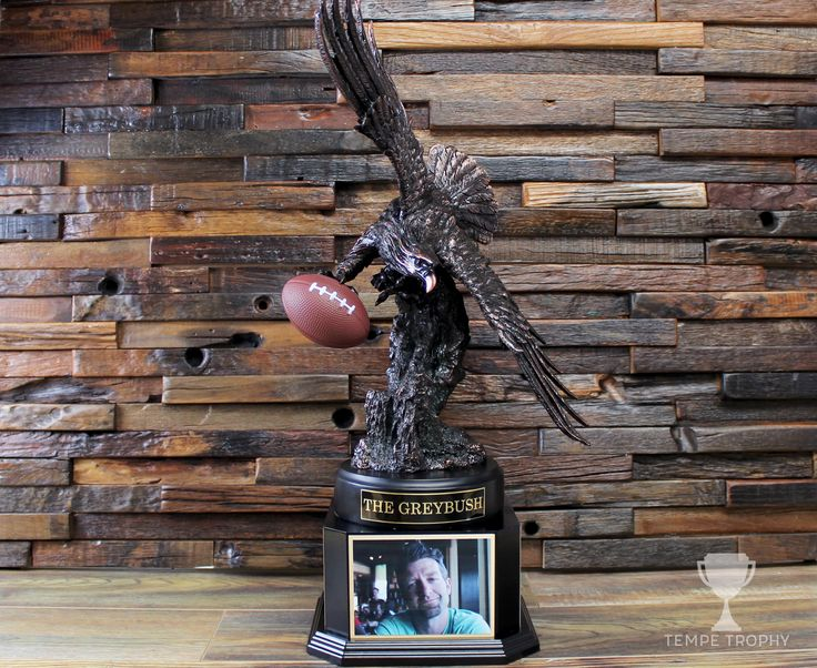 This has got to be one of the most stately fantasy football trophies we've ever made. Is that eagle holding a football? Yes, yes it is.  (www.TempeTrophy.com)  #TempeTrophy #FantasyFootballTrophy #BronzeEagle #Football #Trophy #PicturePlaque